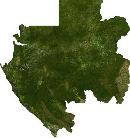 Le SLAM au Gabon