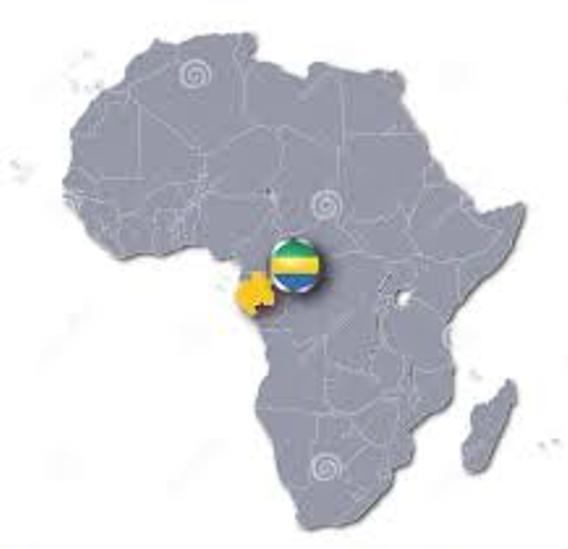 CONFÉRENCE de PRESSE:LA SITUATION ALARMANTE AU GABON & en AFRIQUE FRANCOPHONE,Vol 1