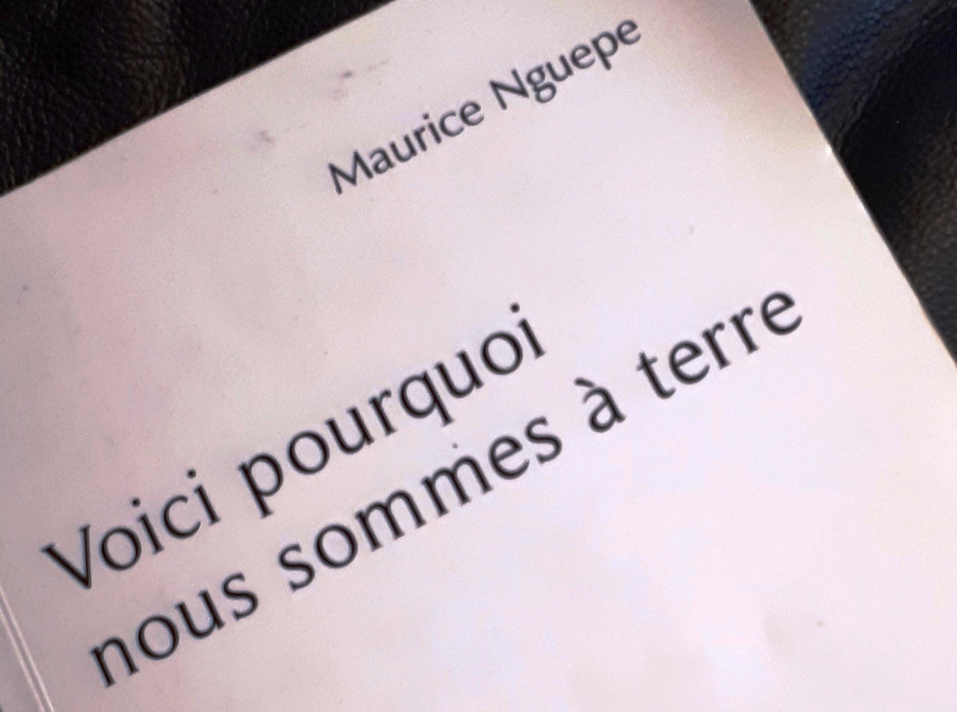 LITTÉRATURE/Dr Maurice NGUEPE:» VOICI POURQUOI NOUS SOMMES à TERRE»