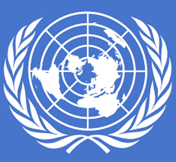 l'Organisation Jeunesse Africaine Ecrit au Conseil de Sécurité de l'ONU sur le Cameroun