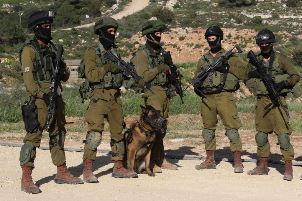 Cameroun: Des avocats israéliens demandent l'interdiction des ventes d'armes sécurisées vers l'unité Bir