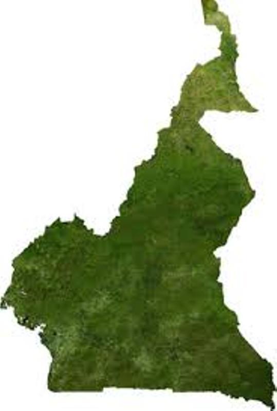 Cameroun:Voyage au cœur d'une mafia qui tient les rennes au sommet de l'Etat.