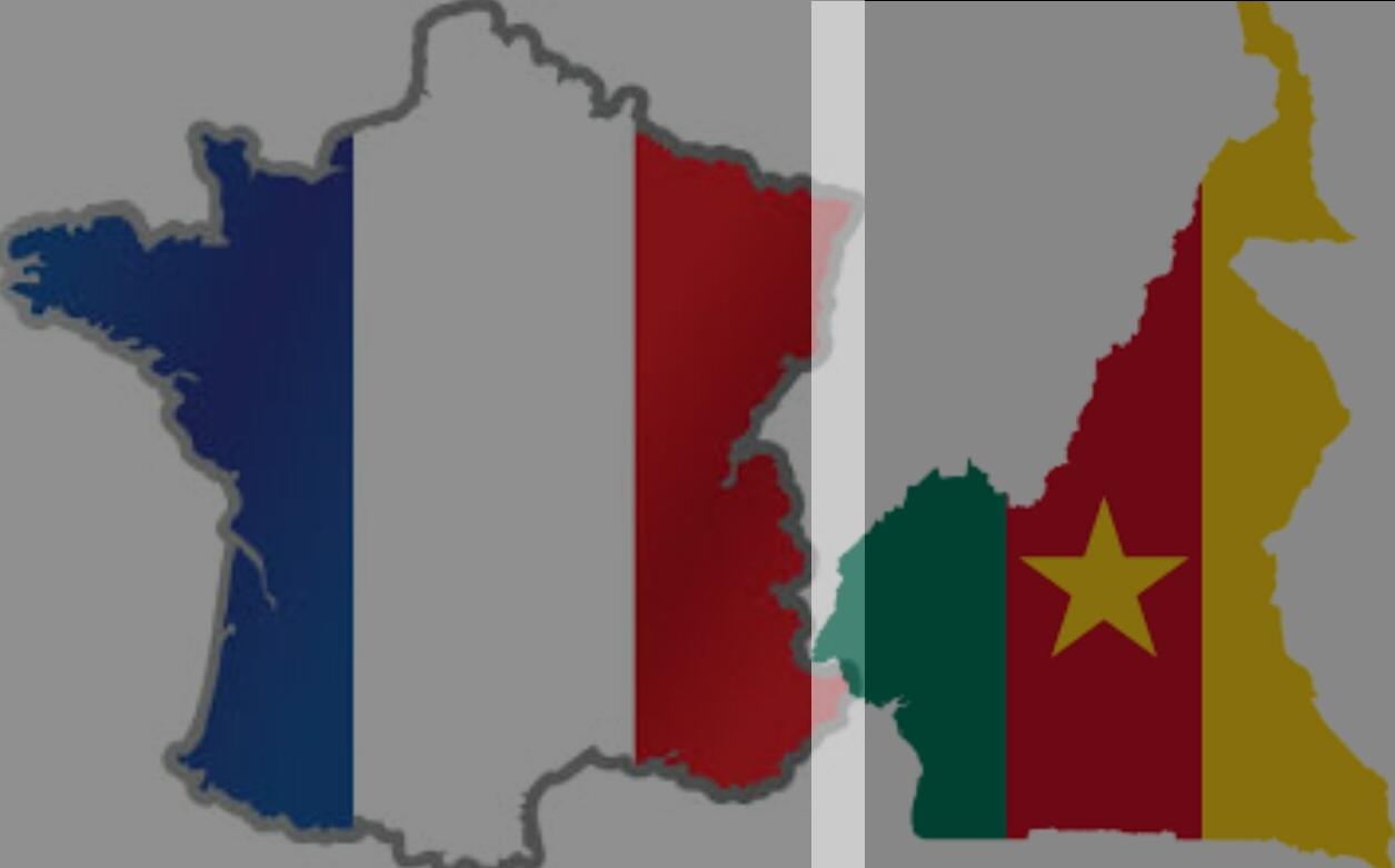 DÉTENTION ARBITRAIRE: LE CAMEROUN & LA FRANCE ENCORE INTERPELLES, Exposé 1