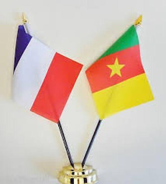 DÉTENTION ARBITRAIRE: LE CAMEROUN & LA FRANCE ENCORE INTERPELLES, Exposé 2