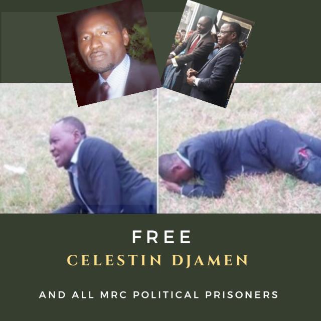 CAMEROUN: CAMPAGNE du CL2P à PARIS pour la LIBÉRATION des PRISONNIERS POLITIQUES