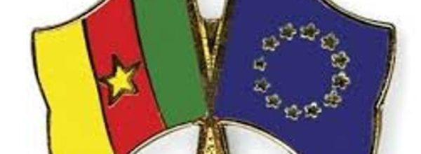 2-RÉSOLUTION DU PARLEMENT EUROPÉEN SUR LE CAMEROUN:CONFÉRENCE de BRUXELLES,QUESTIONS/RÉPONSES