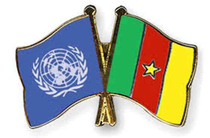 Cameroun : le Conseil de sécurité de l'ONU se réunira le 13 mai sur la crise anglophone