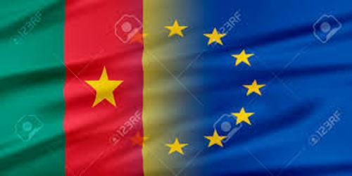 CAMEROUN:»LA SITUATION EST ENTRAIN DE DÉGÉNÉRER DEPUIS LES DERNIÈRES ELECTIONS PRÉSIDENTIELLES»