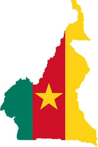CAMEROUN: DIALOGUE NATIONAL, COMPRENDRE LES RAISONS D'UN PROBABLE INSUCCÈS