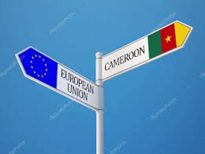 CAMEROUN: LES EURO-DÉPUTES ENVISAGENT DE S'Y RENDRE